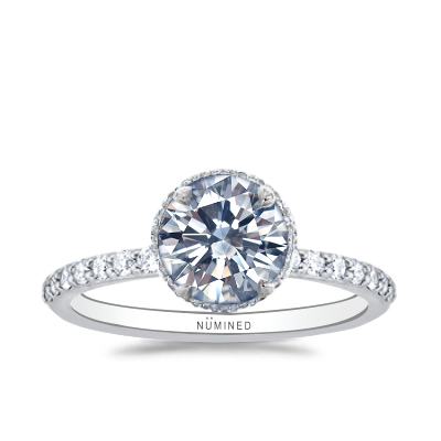 Ana Belgian Pave Hidden Halo Floating Profile Engagement Ring