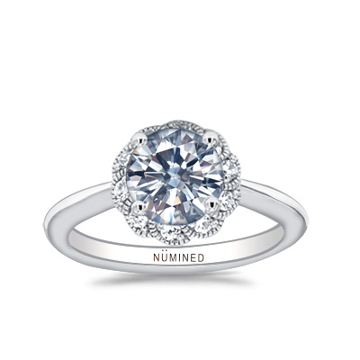 Arden Floral Halo Open Gallery Engagement Ring